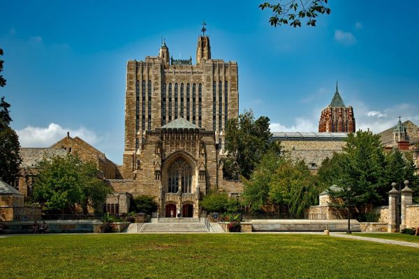 Invest Like the Ivy League: Using Real Estate Investments to Deliver Outsized Returns